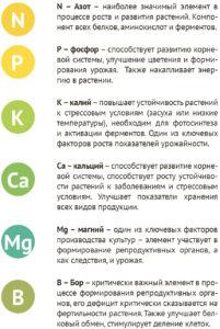 Функции элементов ГроГрин