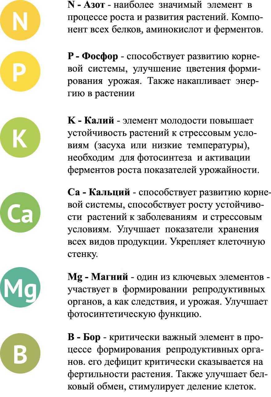 Функции элементов 1
